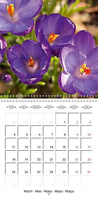 Plants close-up (Wall Calendar 2019 300 × 300 mm Square) - Produktdetailbild 3