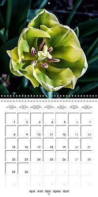Plants close-up (Wall Calendar 2019 300 × 300 mm Square) - Produktdetailbild 4