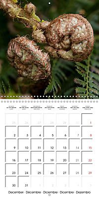 Plants close-up (Wall Calendar 2019 300 × 300 mm Square) - Produktdetailbild 12