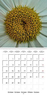 Plants close-up (Wall Calendar 2019 300 × 300 mm Square) - Produktdetailbild 10