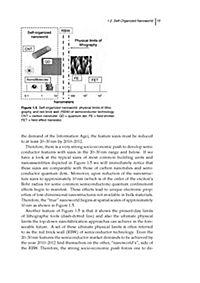 Plasma Nanoscience - Produktdetailbild 5