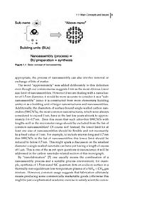 Plasma Nanoscience - Produktdetailbild 1