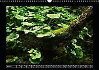 Plitvicer Seen - Europas erster Nationalpark (Wandkalender 2019 DIN A3 quer) - Produktdetailbild 5