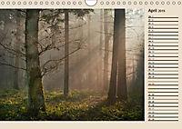 Poesie der Natur (Wandkalender 2019 DIN A4 quer) - Produktdetailbild 4