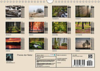 Poesie der Natur (Wandkalender 2019 DIN A4 quer) - Produktdetailbild 13