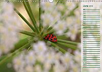 Poetic Nature (Wall Calendar 2019 DIN A3 Landscape) - Produktdetailbild 6