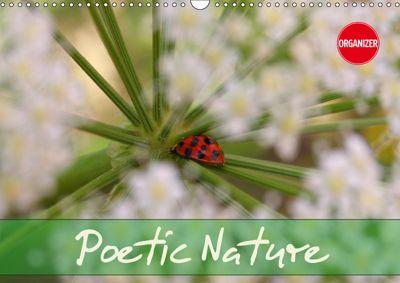 Poetic Nature (Wall Calendar 2019 DIN A3 Landscape), Gisela Kruse