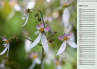 Poetic Nature (Wall Calendar 2019 DIN A3 Landscape) - Produktdetailbild 4