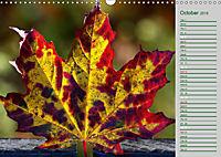 Poetic Nature (Wall Calendar 2019 DIN A3 Landscape) - Produktdetailbild 10
