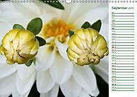 Poetic Nature (Wall Calendar 2019 DIN A3 Landscape) - Produktdetailbild 9