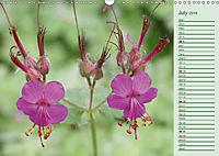 Poetic Nature (Wall Calendar 2019 DIN A3 Landscape) - Produktdetailbild 7