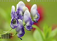 Poetic Nature (Wall Calendar 2019 DIN A4 Landscape) - Produktdetailbild 8
