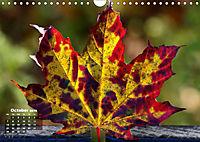 Poetic Nature (Wall Calendar 2019 DIN A4 Landscape) - Produktdetailbild 10