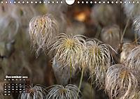 Poetic Nature (Wall Calendar 2019 DIN A4 Landscape) - Produktdetailbild 12