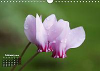 Poetic Nature (Wall Calendar 2019 DIN A4 Landscape) - Produktdetailbild 2