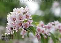 Poetic Nature (Wall Calendar 2019 DIN A4 Landscape) - Produktdetailbild 5
