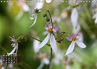 Poetic Nature (Wall Calendar 2019 DIN A4 Landscape) - Produktdetailbild 4