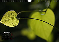 Poetic Nature (Wall Calendar 2019 DIN A4 Landscape) - Produktdetailbild 3