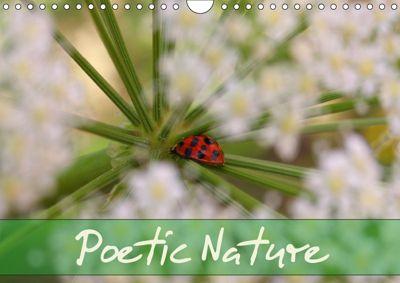 Poetic Nature (Wall Calendar 2019 DIN A4 Landscape), Gisela Kruse