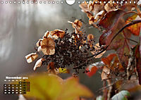 Poetic Nature (Wall Calendar 2019 DIN A4 Landscape) - Produktdetailbild 11