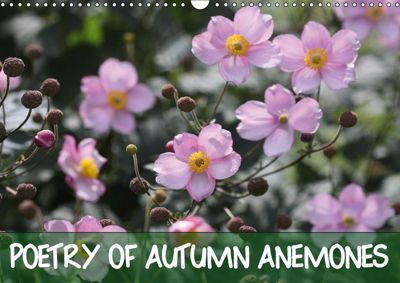 Poetry of Autumn Anemones (Wall Calendar 2019 DIN A3 Landscape), Gisela Kruse