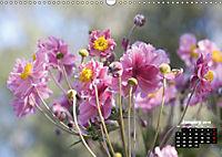 Poetry of Autumn Anemones (Wall Calendar 2019 DIN A3 Landscape) - Produktdetailbild 1