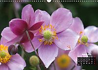 Poetry of Autumn Anemones (Wall Calendar 2019 DIN A3 Landscape) - Produktdetailbild 4
