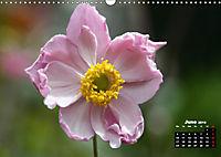 Poetry of Autumn Anemones (Wall Calendar 2019 DIN A3 Landscape) - Produktdetailbild 6