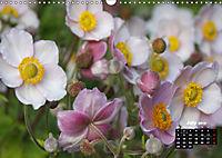 Poetry of Autumn Anemones (Wall Calendar 2019 DIN A3 Landscape) - Produktdetailbild 7