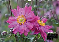 Poetry of Autumn Anemones (Wall Calendar 2019 DIN A3 Landscape) - Produktdetailbild 10