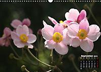Poetry of Autumn Anemones (Wall Calendar 2019 DIN A3 Landscape) - Produktdetailbild 9