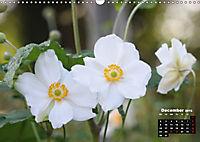 Poetry of Autumn Anemones (Wall Calendar 2019 DIN A3 Landscape) - Produktdetailbild 12