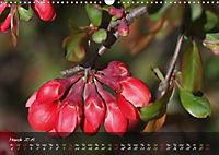 Poetry of Blossom Buds (Wall Calendar 2019 DIN A3 Landscape) - Produktdetailbild 3