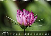 Poetry of Blossom Buds (Wall Calendar 2019 DIN A3 Landscape) - Produktdetailbild 7