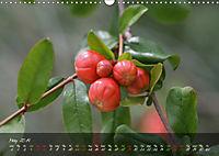 Poetry of Blossom Buds (Wall Calendar 2019 DIN A3 Landscape) - Produktdetailbild 5