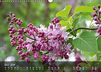 Poetry of Blossom Buds (Wall Calendar 2019 DIN A3 Landscape) - Produktdetailbild 4