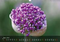 Poetry of Blossom Buds (Wall Calendar 2019 DIN A3 Landscape) - Produktdetailbild 6