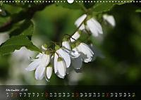 Poetry of Blossom Buds (Wall Calendar 2019 DIN A3 Landscape) - Produktdetailbild 11