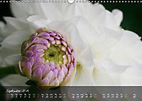 Poetry of Blossom Buds (Wall Calendar 2019 DIN A3 Landscape) - Produktdetailbild 9