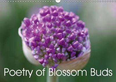 Poetry of Blossom Buds (Wall Calendar 2019 DIN A3 Landscape), Gisela Kruse