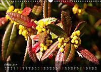 Poetry of Blossom Buds (Wall Calendar 2019 DIN A3 Landscape) - Produktdetailbild 10