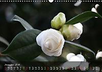 Poetry of Blossom Buds (Wall Calendar 2019 DIN A3 Landscape) - Produktdetailbild 12