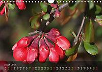 Poetry of Blossom Buds (Wall Calendar 2019 DIN A4 Landscape) - Produktdetailbild 3