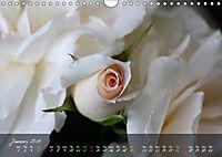 Poetry of Blossom Buds (Wall Calendar 2019 DIN A4 Landscape) - Produktdetailbild 1
