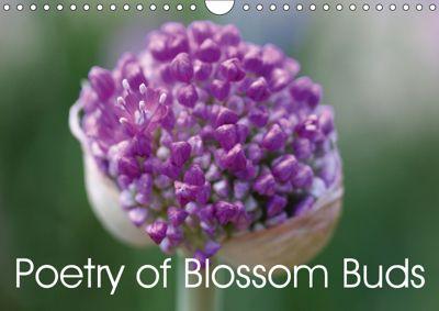 Poetry of Blossom Buds (Wall Calendar 2019 DIN A4 Landscape), Gisela Kruse