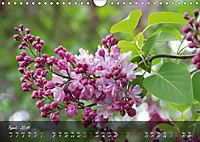 Poetry of Blossom Buds (Wall Calendar 2019 DIN A4 Landscape) - Produktdetailbild 4