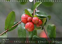 Poetry of Blossom Buds (Wall Calendar 2019 DIN A4 Landscape) - Produktdetailbild 5