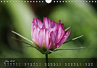 Poetry of Blossom Buds (Wall Calendar 2019 DIN A4 Landscape) - Produktdetailbild 7