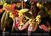 Poetry of Blossom Buds (Wall Calendar 2019 DIN A4 Landscape) - Produktdetailbild 10