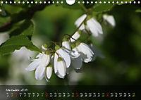 Poetry of Blossom Buds (Wall Calendar 2019 DIN A4 Landscape) - Produktdetailbild 11